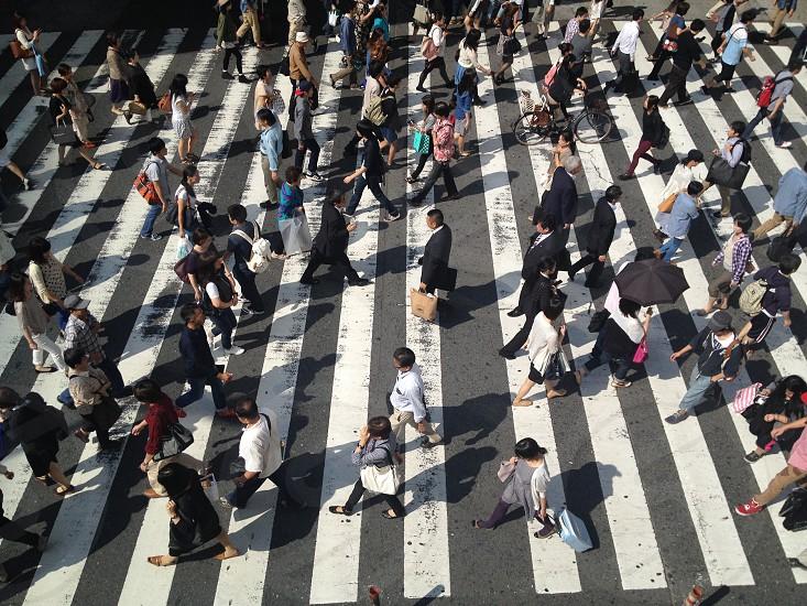 people crossing pedestrian lane photo