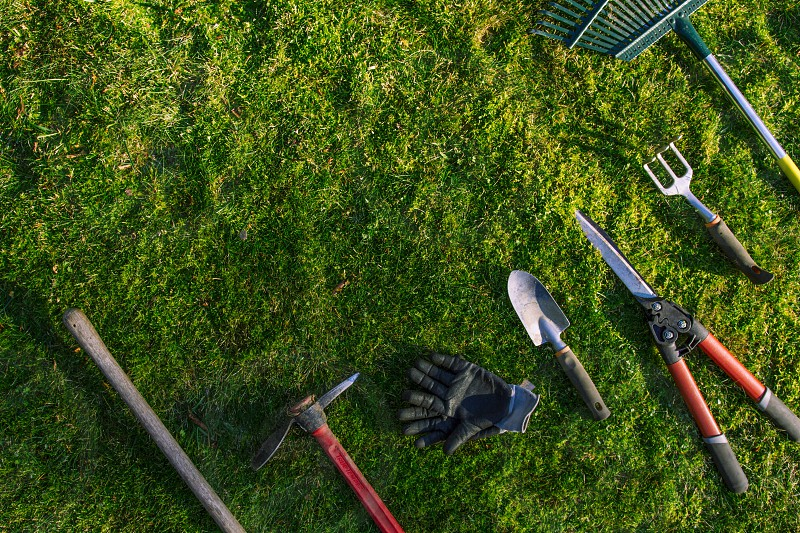 Yard work garden tools on green grass spring time planting top view photo