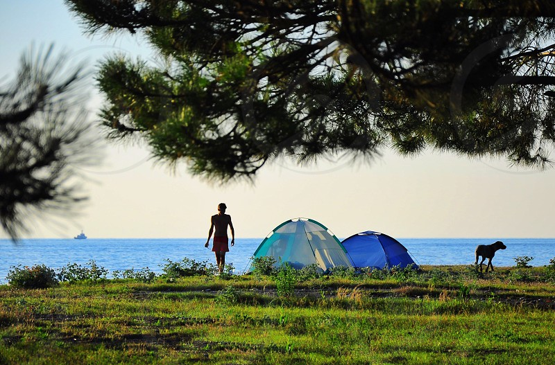 man with dog near blue and white camping tents on green grass near body of water photo