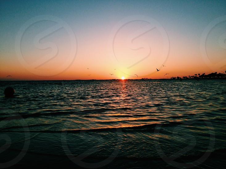 Tampa Bay FL sunset. VSCO settings: C1 exposure -1 saturation +1 photo