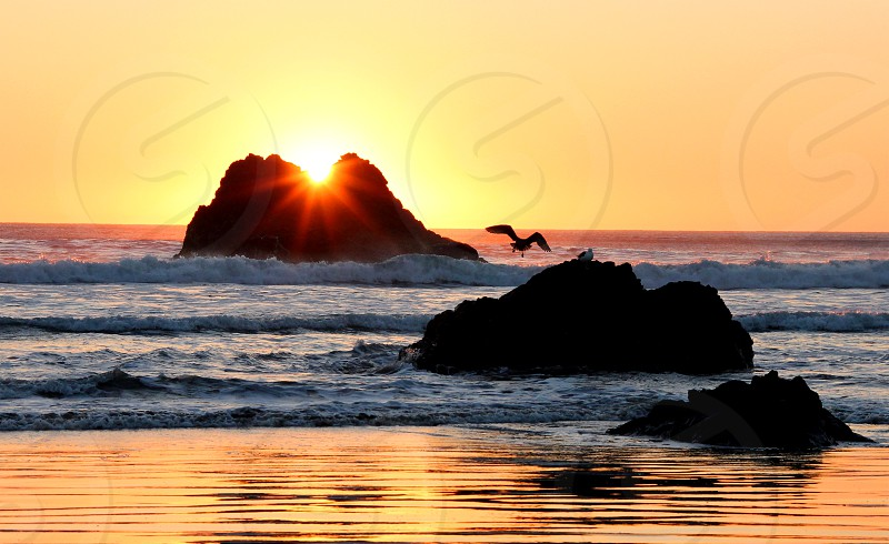 Beach near Morro Bay CA. photo
