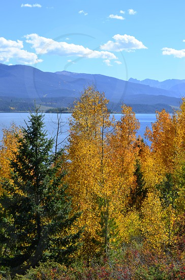 blue and white cloudy sky over green and yellow tree lined blue lake photo