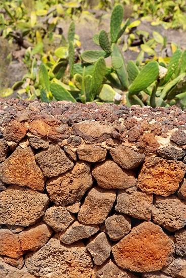 Lanzarote La Guatiza masonry with volcanic stones Canary Islands photo