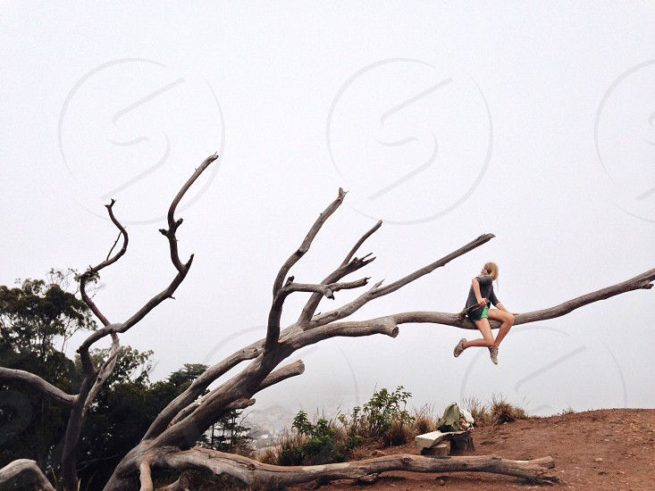 Woman Sitting on Large Tree Branches photo