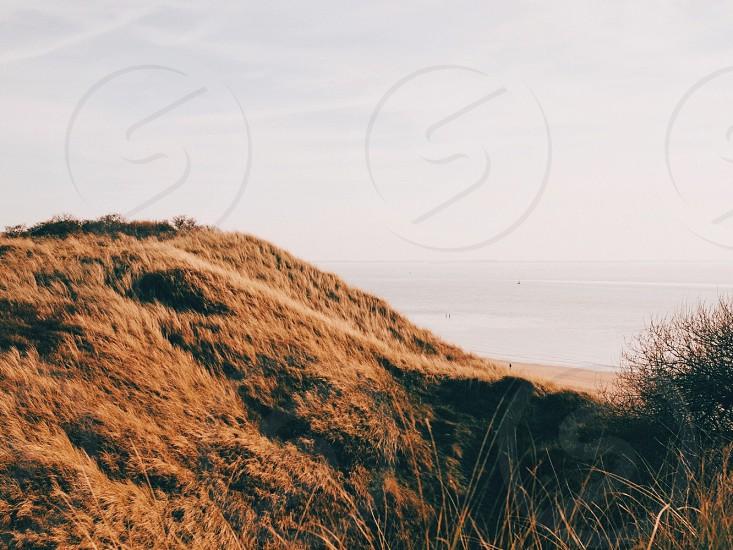 Minimal dunes  photo