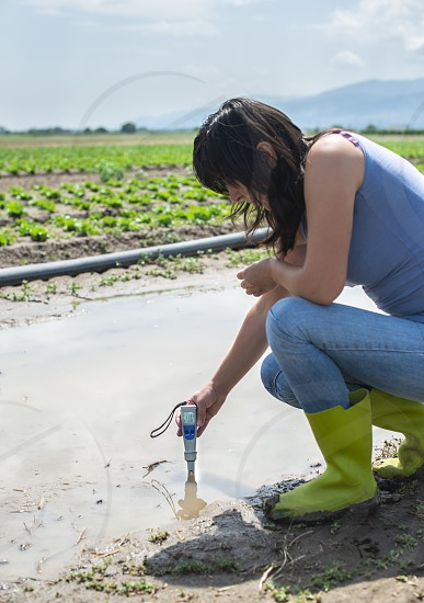 Woman mesures irrigation water with digital PH meter in water puddle. Lettuce plants and pipes. photo