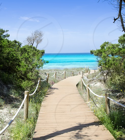 beach way to Illetes paradise beach in Formentera Balearic islands photo