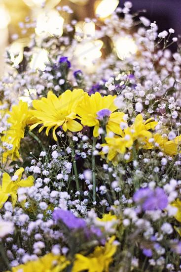 yellow petaled flower beside white and purple flower bundle photo