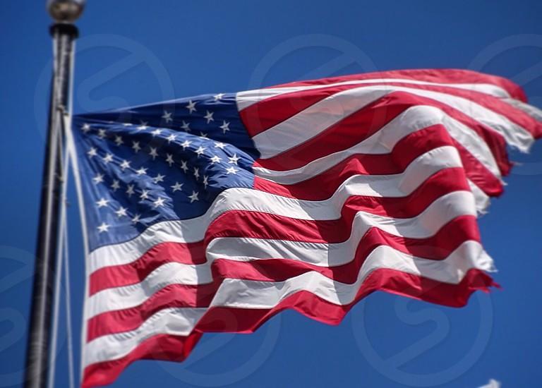 flag of U.S.A photo