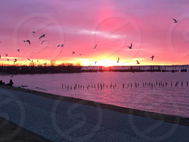 Freedom at Sunset photo