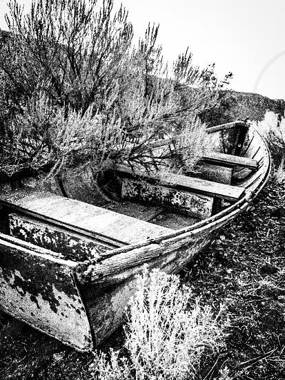 Row boat bench seats.  photo