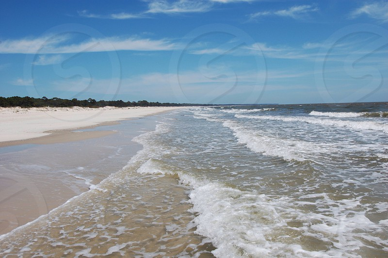 St. Vincent Island Florida photo