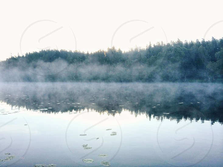 fogs on top of the lake water photo