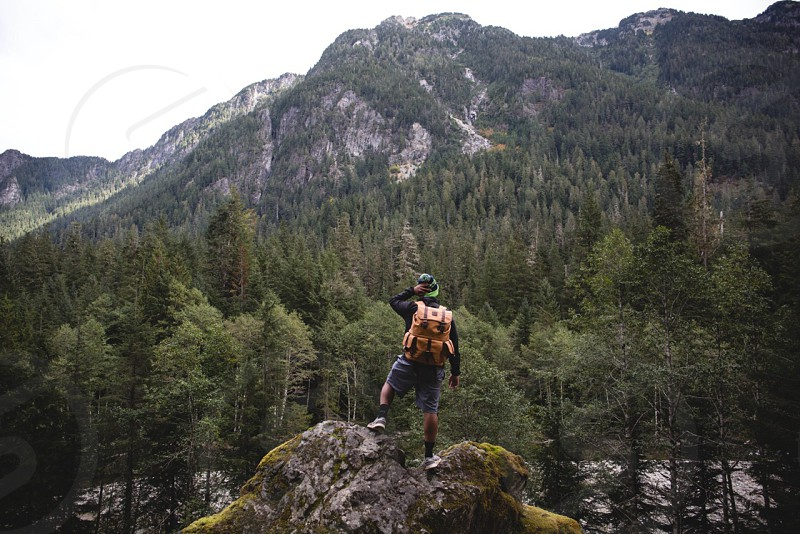 man stone overlooking pine tree forest photo