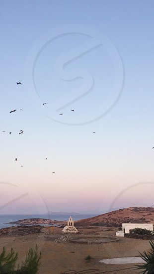 Birds flying sunset Cyclades islands church summer in Greece island summer pink sunset photo