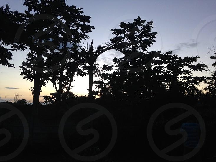 Zambian Sunset. photo