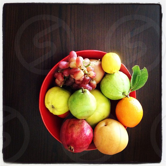 Fruit Bowl. photo