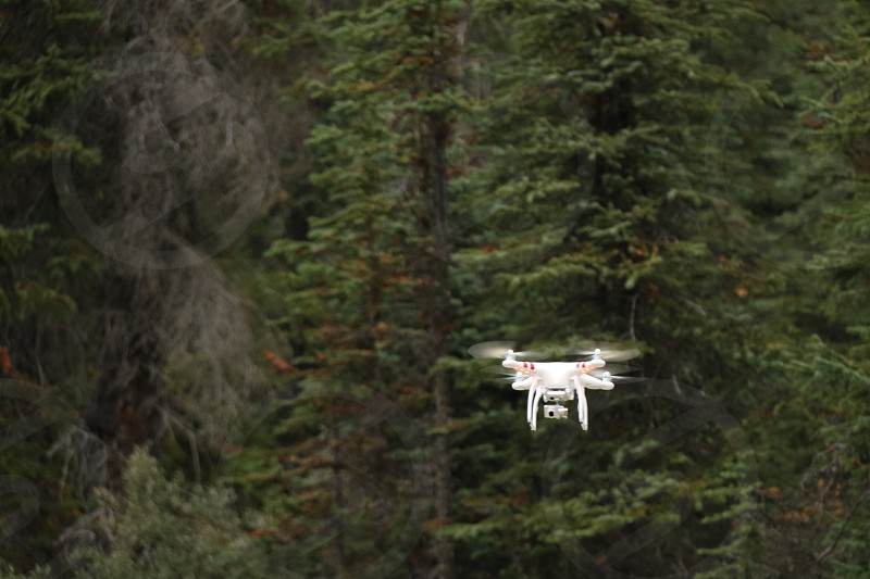 white quadcopter drone by the green trees photo