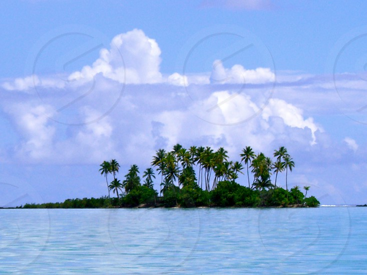 tropical island Tahiti photo