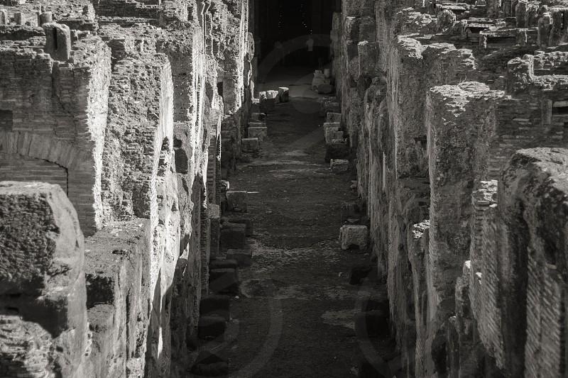 Colosseum Rome Italy photo