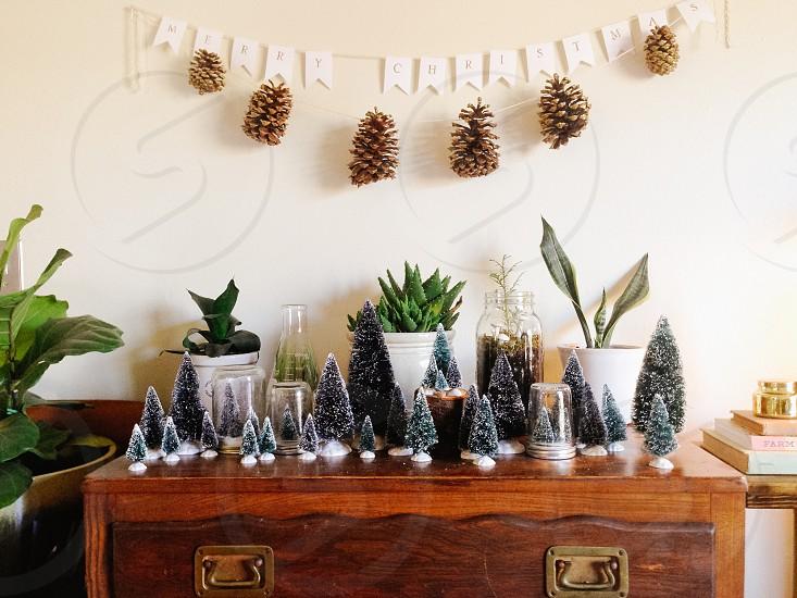 mini christmas tree on desk photo