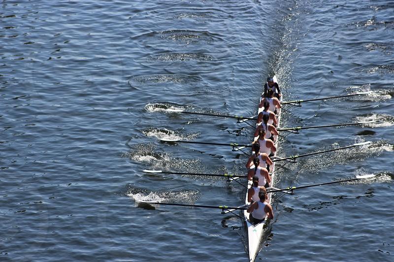 Crew racing skull sport water rowing oars crew racing photo
