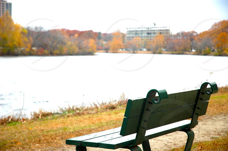 st charles river cambridge harvard bench view photo