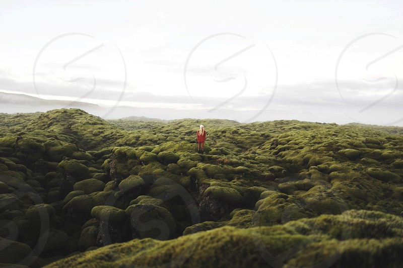 person on green grass-covered land facing body of water photo