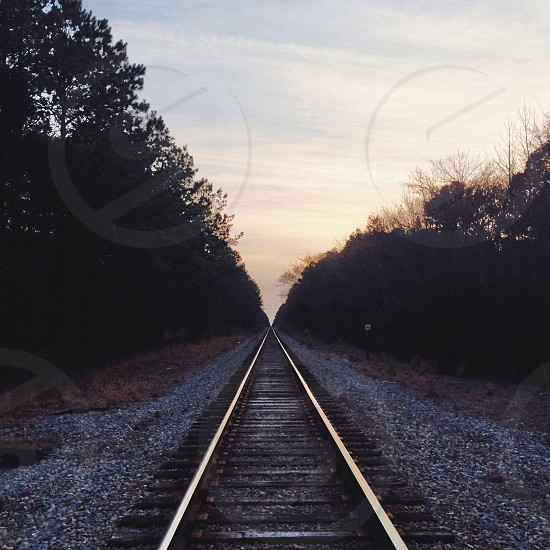 narrow railroad surrounded by trees photo