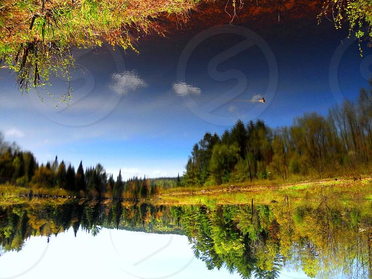 Upside down: Littleton NH photo