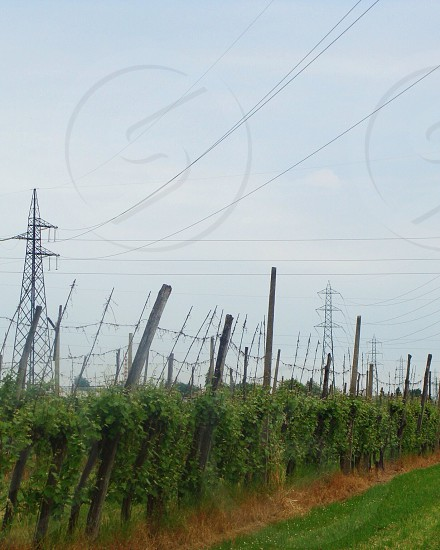 grey transmission tower photo
