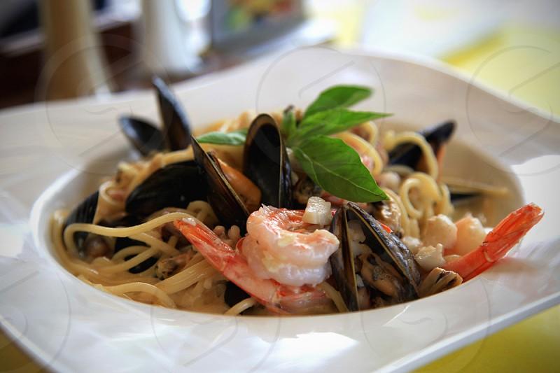 pasta on white plate photo