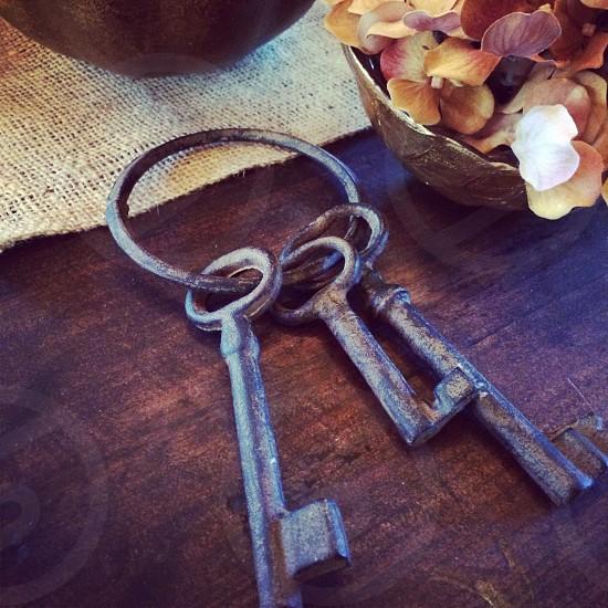 Rustic looking set of metal keys on a wood table. photo