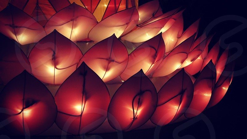 Lantern Festival Missouri Botanical Garden photo