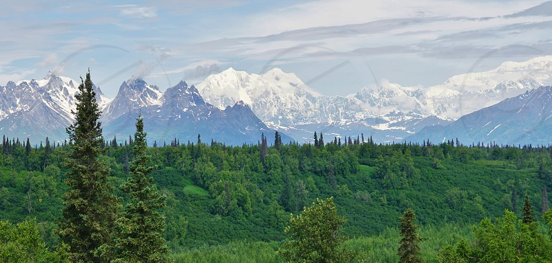Denali National Park and Preserve Alaska photo