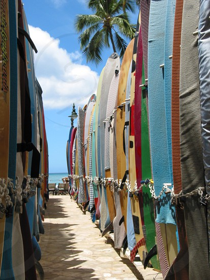 Surfboards on beach in Hawaii photo