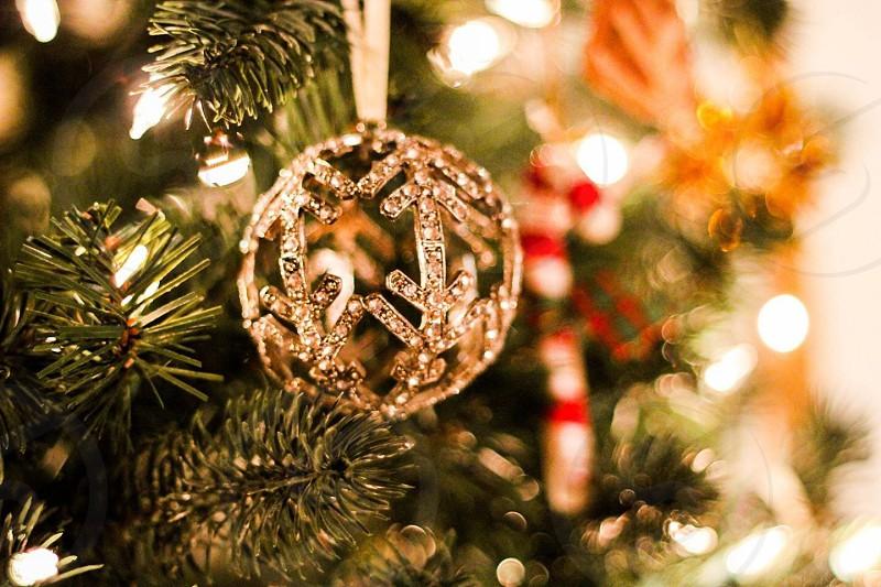 silver christmas ball with diamonds hanged in christmas tree photo