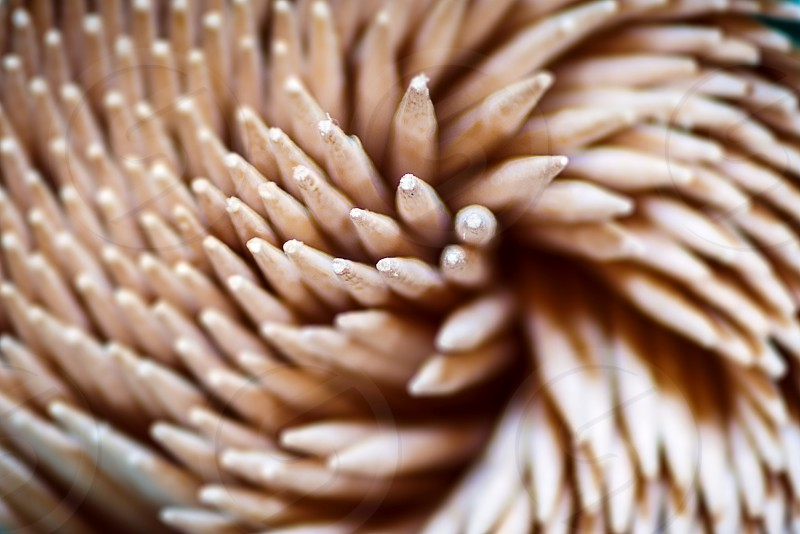 Close up of a group of wooden toothpicks seen from above photo