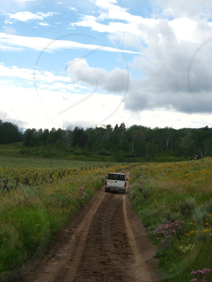 truck traveling down rural path with fence and wildflowers trees and cloudscape in background. photo