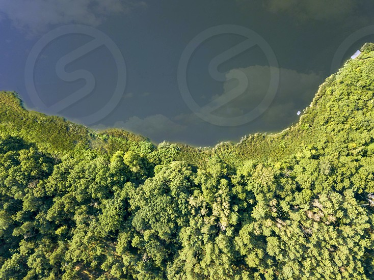 Beautiful aerial view of the drone on the river and the green forest on a sunny day. Natural background photo