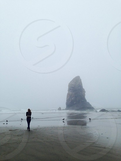haystack rock oregon  photo