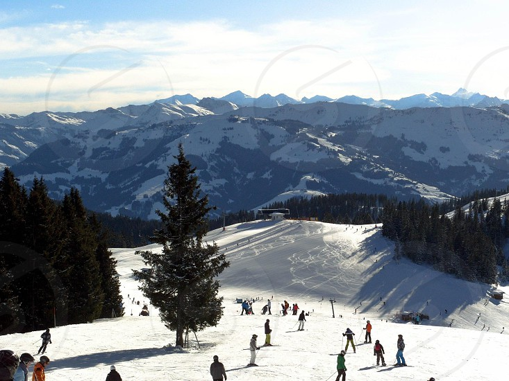 ski valley with skiers photo