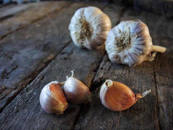 beige garlic clubs photo