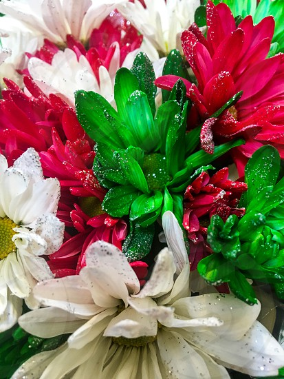 Christmas glitterflowersredgreen white  photo