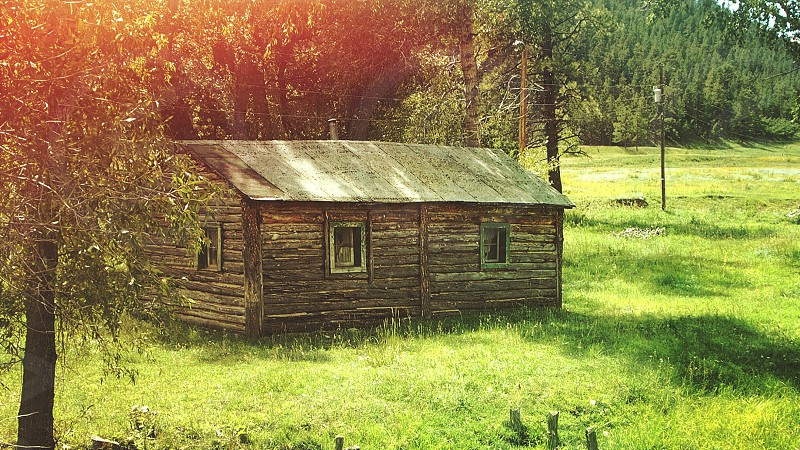 wood cabin in the field photo