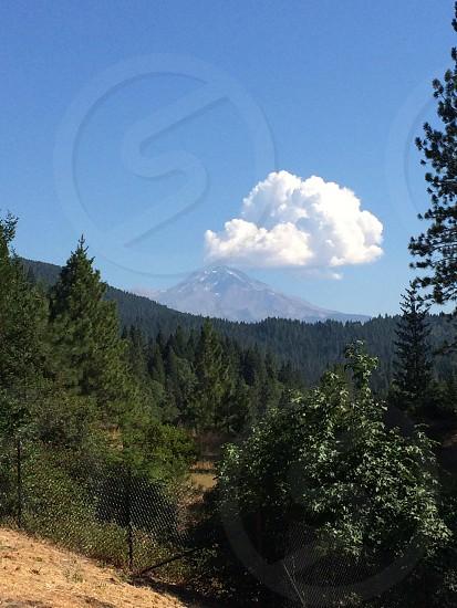 Mt. Shasta photo