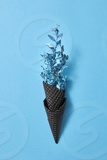 Wafer black horns of bouquet of panted blue twigs with leaves on a blue paper background space for text. photo