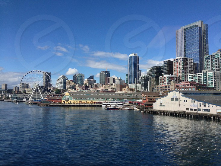 white ferries wheel beside body of water and high rise buildings photo