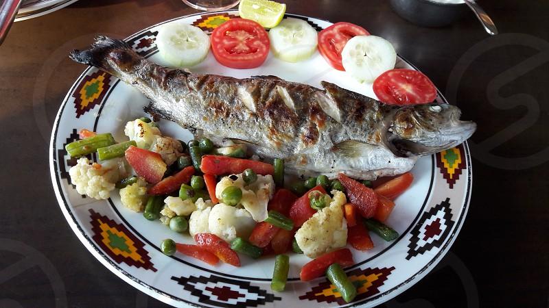delicious trout fish photo