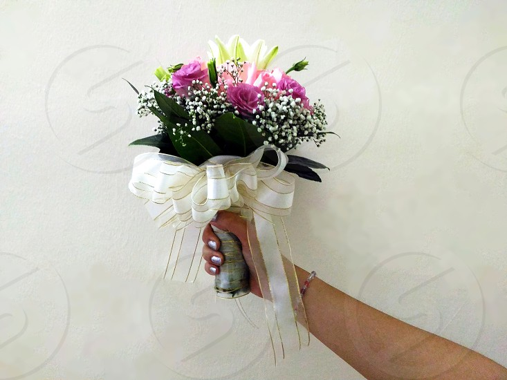 person's right hand holding purple and white petaled green leaves flower bouquet with white and beige ribbon tie beside beige wall paint photo